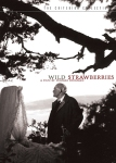 139 Wild Strawberries
